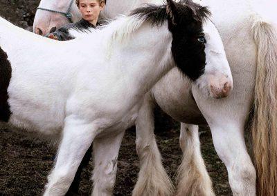 Boy & Piebalds, Galway 1994